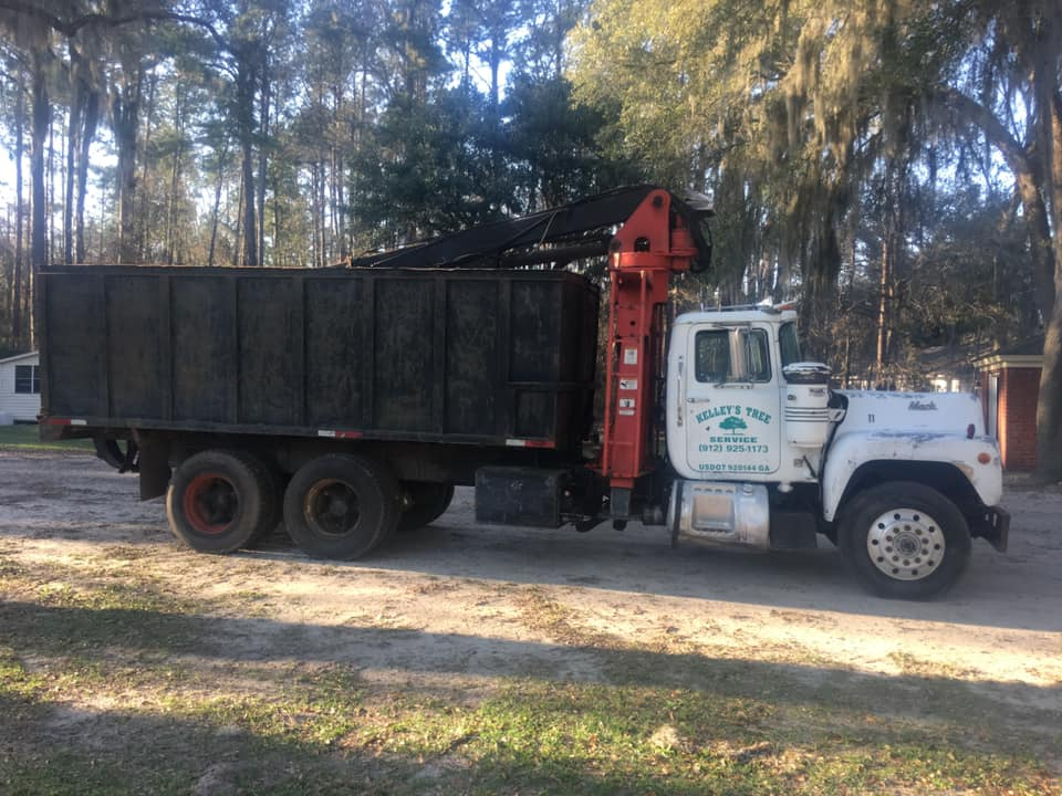 Tree Removal Truck for Sale